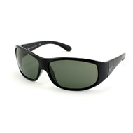 Ray-Ban RB 4110  online kaufen