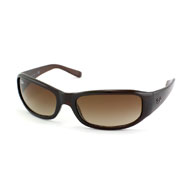 Ray-Ban RB 4137  online kaufen